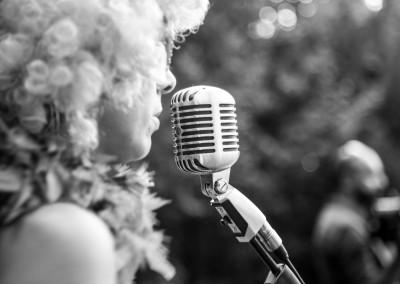 Cantante durante il ricevimento