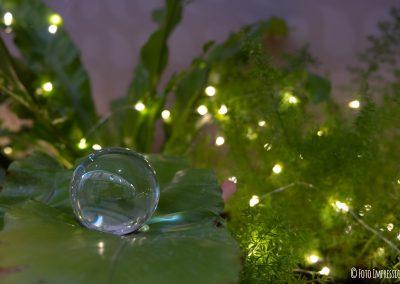 Bologna in una bolla - Galleria Cavour - Addobbi e luci natalizie